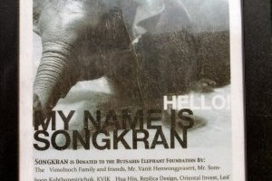 My name is Songkran